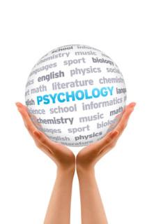 das Psychologiestudium